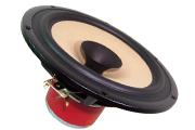 Loudspeaker Drive Units